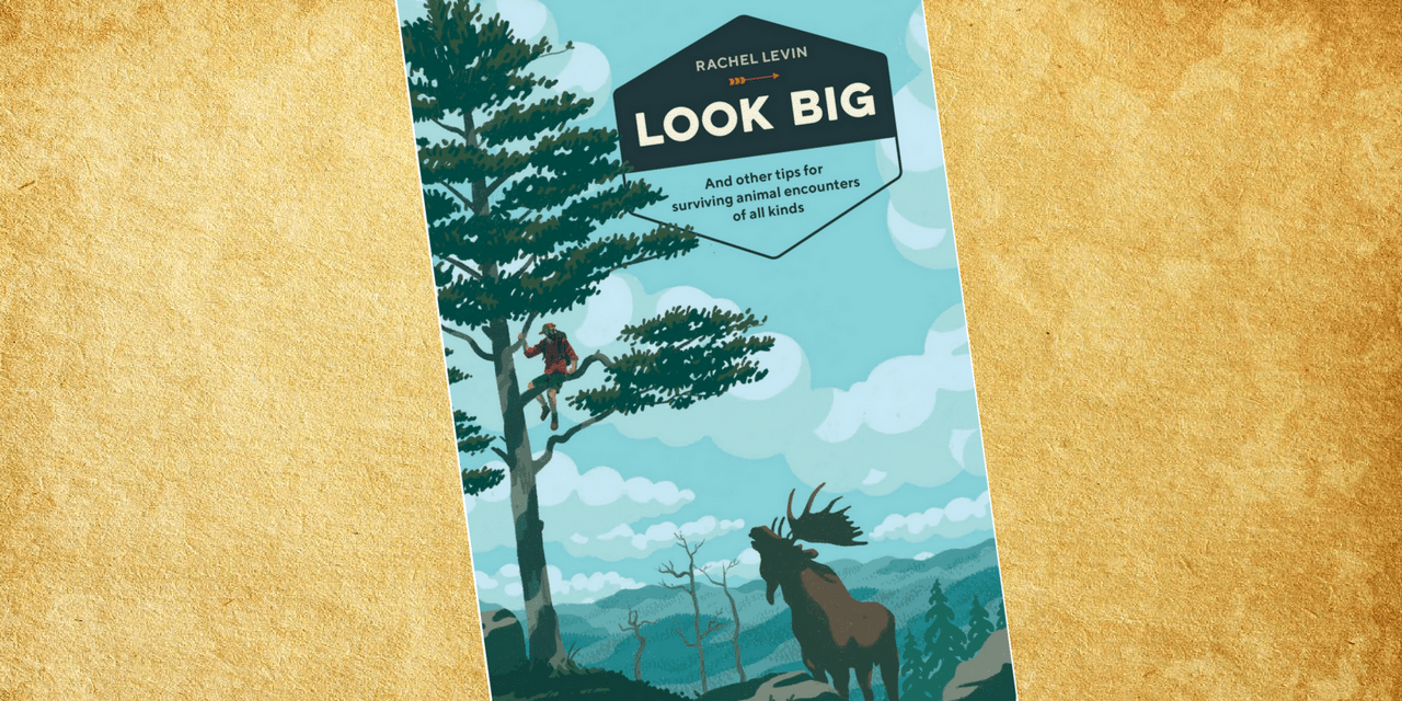 Photo of Book Review Look Big by Rachel Levin