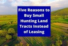 Photo of Five Reasons to Buy Small Hunting Land Tracts Instead of Leasing